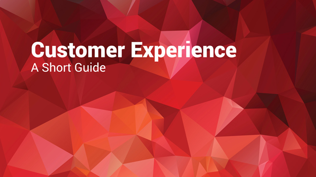 ChannelNet-customer experience- article